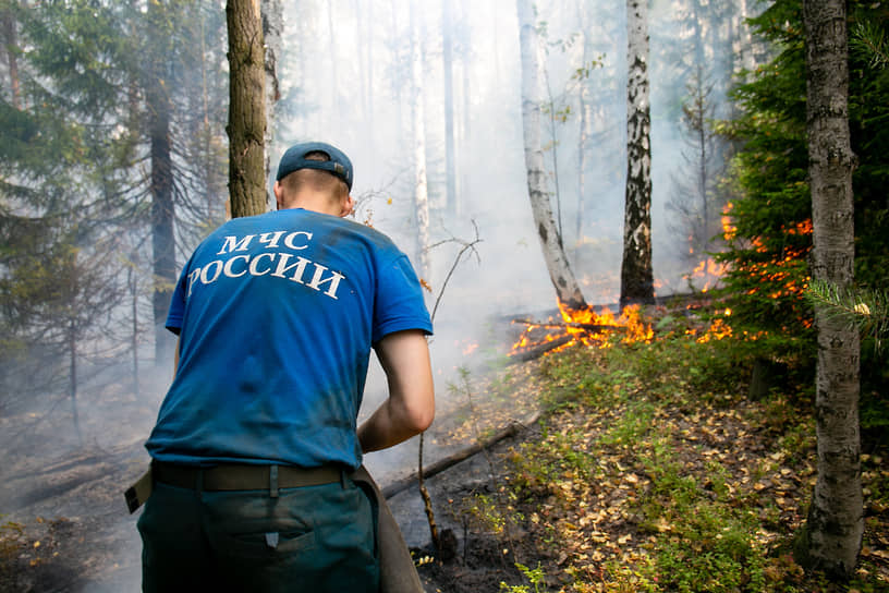 Тушение лесного пожара на горе Волчихе