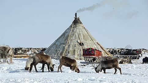 Арктический урожай