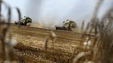 Режим ЧС из-за почвенной засухи ввели в Удмуртии
