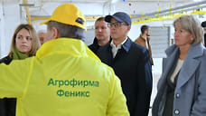 1 млрд рублей инвестиций направят в расширение птицеводческого комплекса в Удмуртии