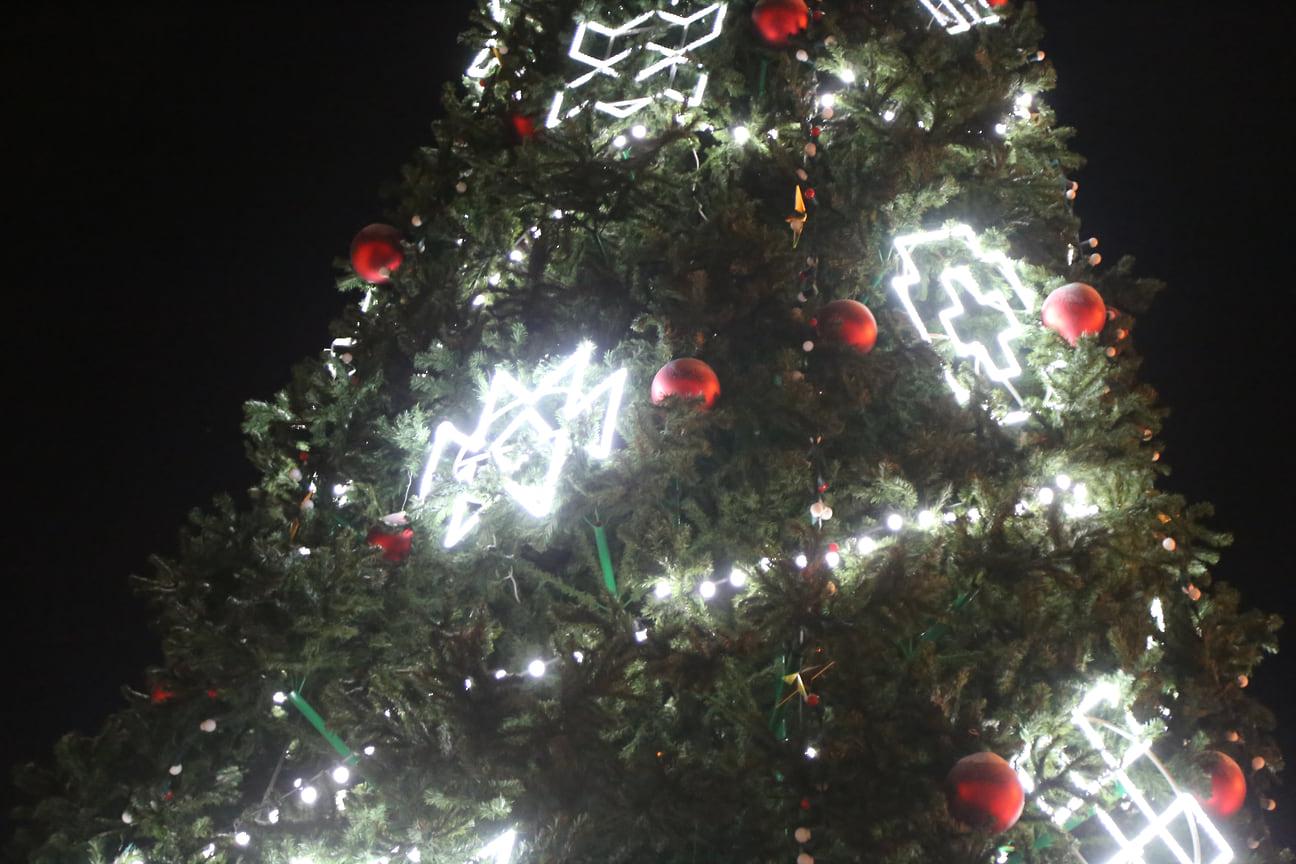 Лесную красавицу высотой в 20 метров и 9 метров в диаметре украсили 130 шаров и звезд, три больших гирлянды, одна 140 метров в длину и две других в 100 метров, засияли красными, белыми и синими огнями