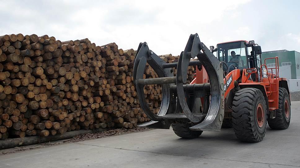 «Монолог» задолжал за ненужное сырье / Власти и инвестор в ЦБК спорят о размере арендных платежей за 2,1 млн га леса