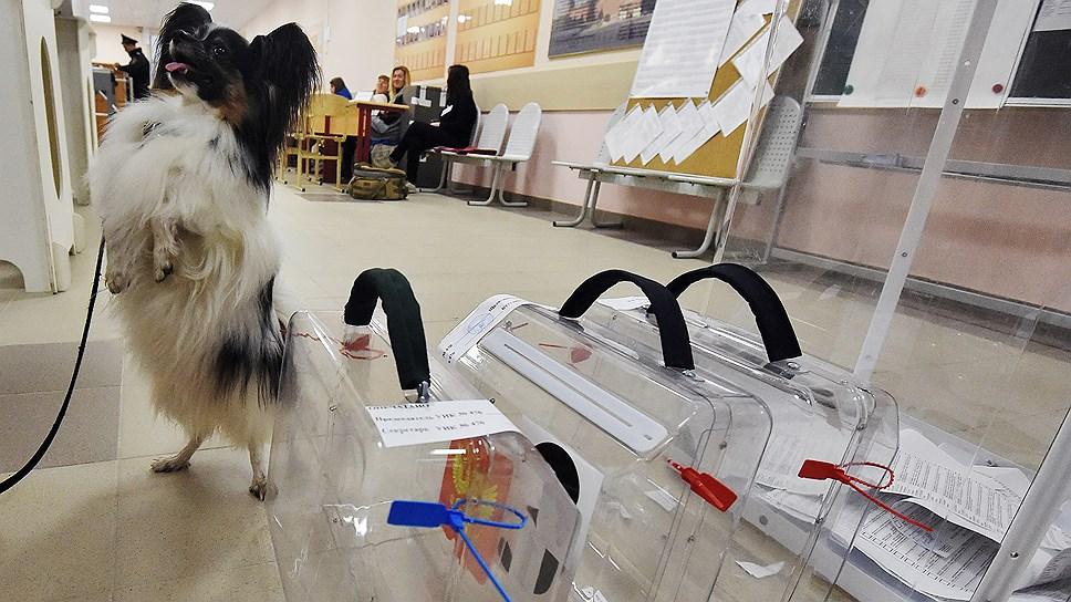 Комиссия из ЦИК выяснит, насколько серьезные нарушения были допущены в ходе выборов