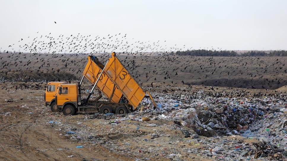 Власти признали, что захоронение мусора наБелореченском полигоне происходит снарушениями технологий
