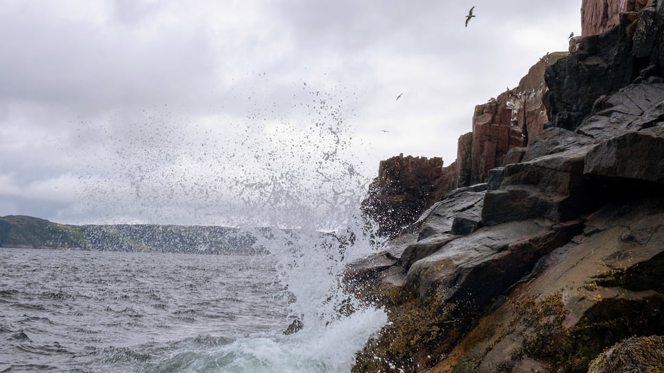 В 2020 году из-за затяжной засухи кубанские города, расположенные на черноморском побережье, испытывают острый дефицит пресной воды