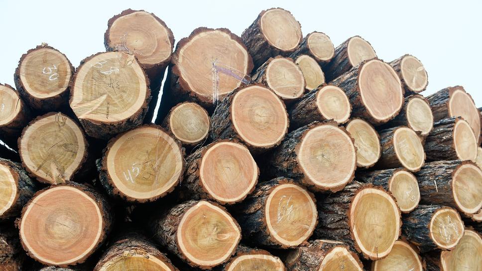 До минприроды Кубани долетелищепки / Фонд дикой природы уличил ведомство в назначении незаконных рубок леса