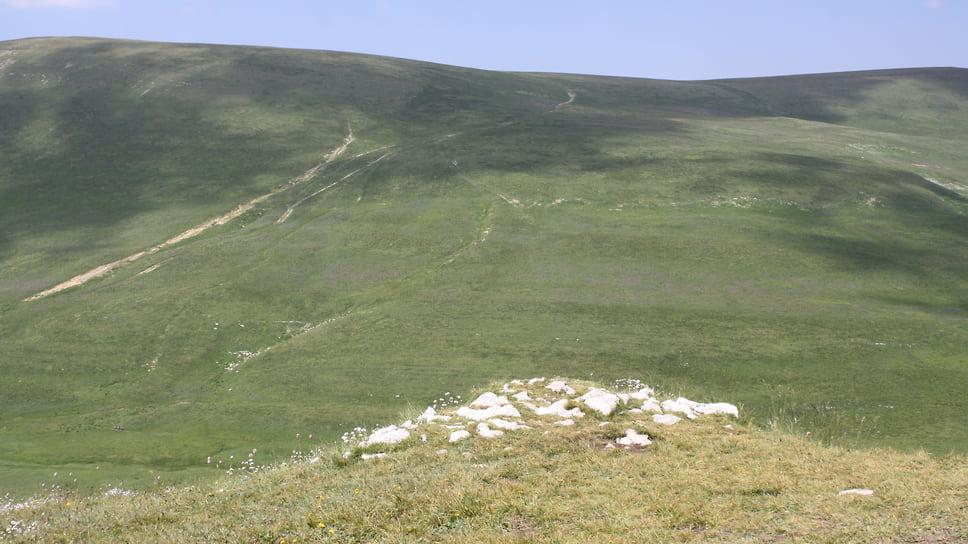 Петрофит — камень или группа камней, вокруг которого произрастают краснокнижные растения. По словам ученых, туристы становятся на такие маленькие скальные образования чтобы сделать селфи, и при этом губят растения