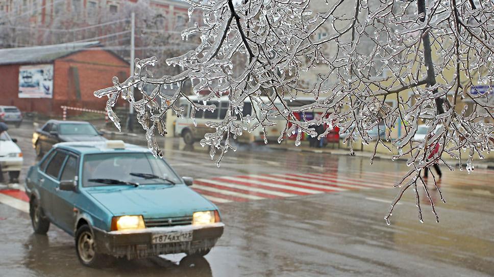 Дерево со «стеклянным» покровом над автомобилями на улице им. Красина в Краснодаре. Январь 2014 года