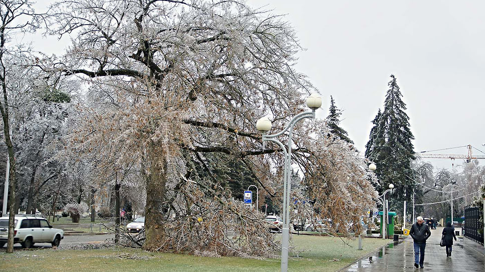 Улица Постовая в Краснодаре после ледяного дождя. Январь 2014 года