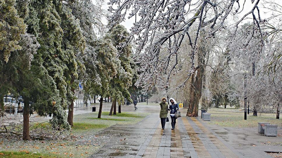 Аллея по улице Постовой после ледяного дождя в Краснодаре. Январь 2014 года