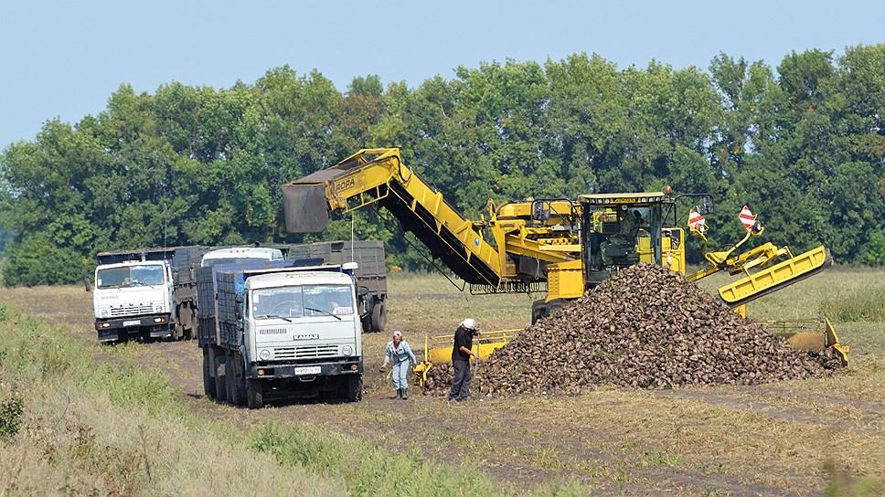 Неудачные погодные условия и опасения аграриев по поводу перепроизводства привели к снижению количества сырья, что может стать причиной подорожания сахара.