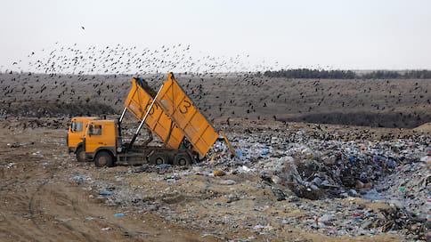 Поделили полигоны  / Власти региона требуют увеличения объемов переработки мусора