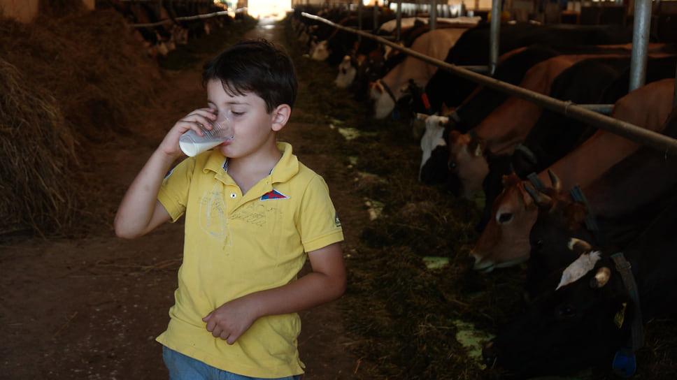 Край с молоком / В этом году, следуя многолетней традиции, край вошел втройкурегионов-лидеров по производству молока. Ноприрекордном производстве молока мощности молокоперерабатывающих предприятий загружены менее чемнаполовину