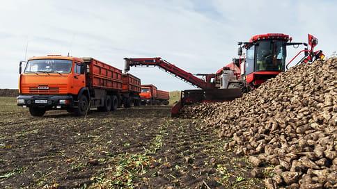 Дефицита не будет  / В краевом минсельхозе сообщили озавершении сезона переработки
