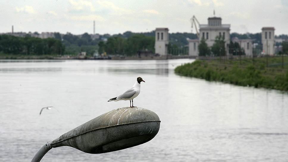 Задержались на месте затопления / В Нижегородской области обсуждают риски строительства низконапорной плотины на Волге