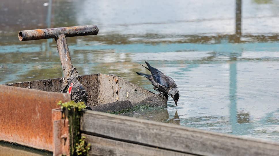 Ловля денег в мутной воде / Нижегородские бизнесмены просят отменить повышенные тарифы насброс сточных вод