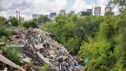 Мусор сваливается в зиму  / В Нижнем Новгороде несанкционированные свалки не успевают ликвидировать в срок