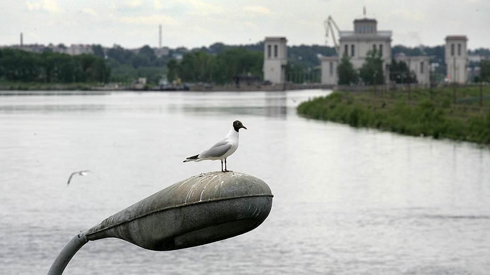 Эксперты считают, что есть альтернативные варианты строительству гидроузла, например изменения режима стока воды на Городецком гидроузле