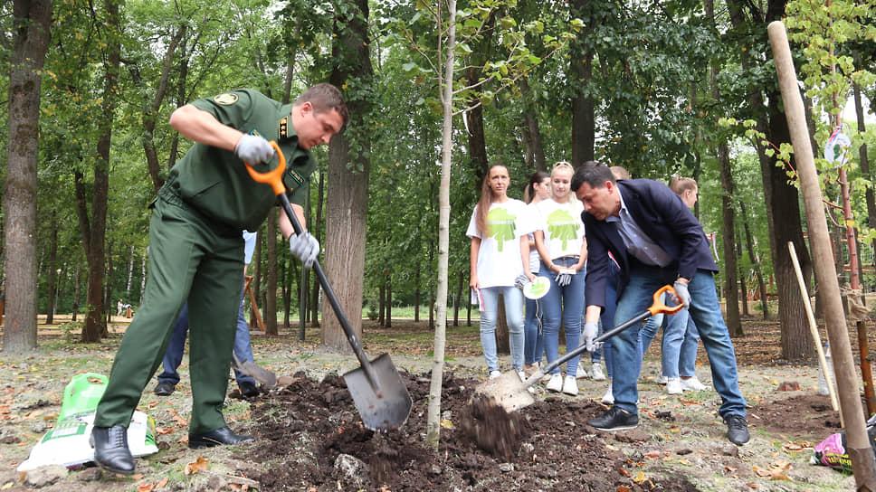 Министры лесного хозяйства и экологии Роман Воробьев (слева) и Денис Егоров тоже посадили по дереву
