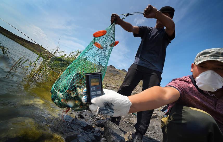 Несмотря на потенциальную угрозу, местные жители рыбачат на озере Балапан