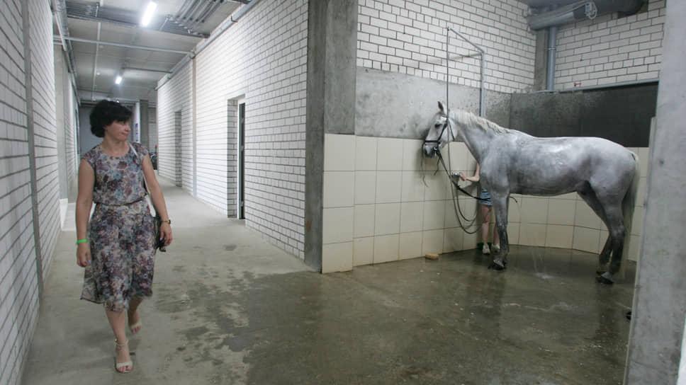 Старый и самый надежный гужевой транспорт сегодня прочно забыт, и лошадей можно встретить только на ипподромах