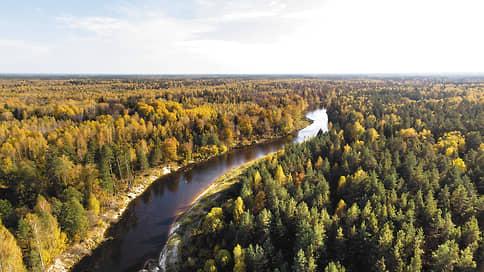 Родные выходные  / Пять идей для уикенда в Нижегородской области