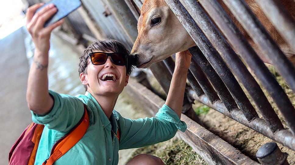 Животноводство — самый привлекательный для инвестиций сектор АПК