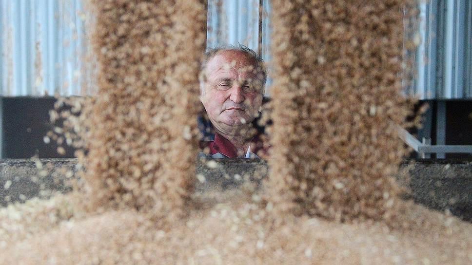 Как сельхозпроизводители просили ввести режим ЧС в Новосибирской области для пролонгации кредитов