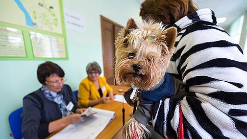 УИК допустил поддельное голосование // На выборах в горсовет Красноярска выявлена фальсификация списка избирателей