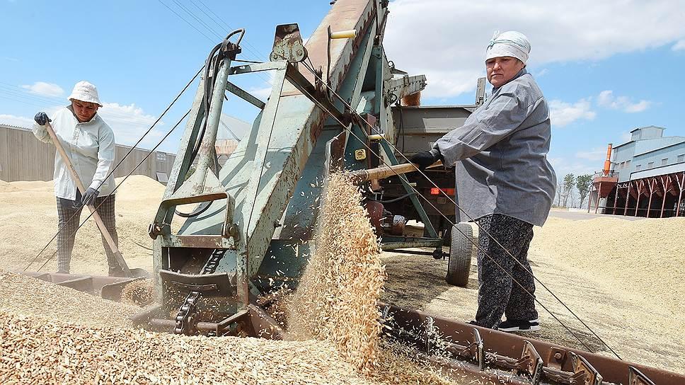 Из новосибирского зерна будет производиться клейковина, кормовой лизин, этиловый спирт и кормовая добавка DDGS