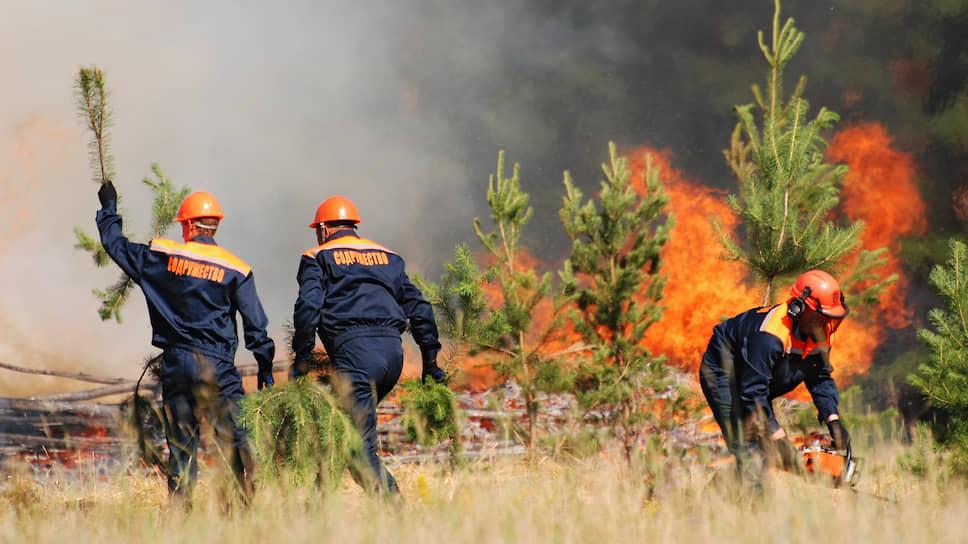 Потушить более  1 млн га лесных пожаров невозможно, нужно ждать, когда это сделают проливные дожди