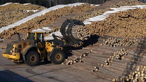 Идет все лесом  / Новоенисейский ЛХК готовится к банкротству