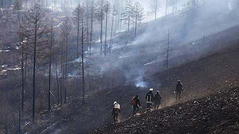 С пламенной приметой  / Новосибирские власти готовятся к пожароопасному сезону