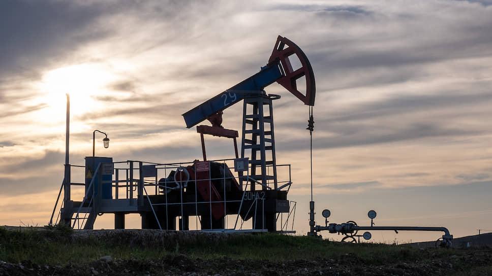 Эксперты не исключают, что, выкупив долги новосибирской компании, ХК «Эволюция» рассматривает возможность получения контроля над ней