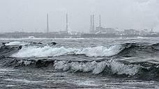 Новый глава СО РАН возглавит научный совет по проблемам Байкала