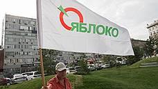 Новосибирское «Яблоко» выберет кандидата в мэры на первых для себя праймериз