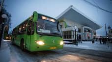 В обновление автобусного парка «Томскавтотранса» власти инвестируют 600 млн рублей