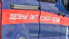 В Кузбассе возбуждено уголовное дело по факту реабилитации нацизма