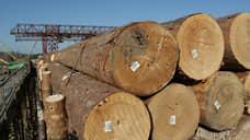 Экспорт сибирского леса в первом полугодии сократился на 11%