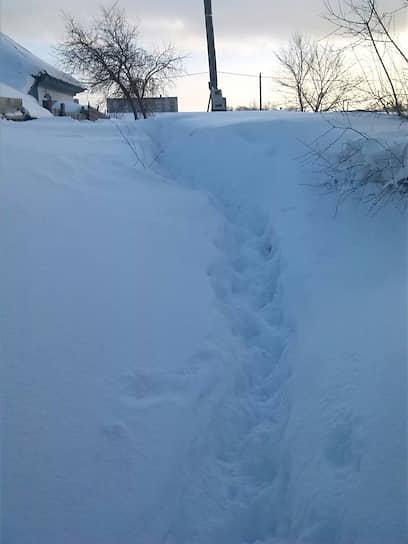 Дорога в местные школы на границе районов Кирпзавода и Мочище в Бийске