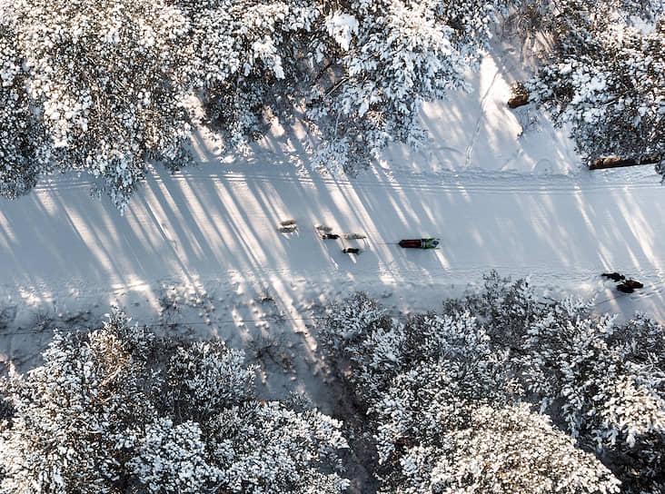 """Гонка на собачьих упряжках <a href=""""/gallery/4219213"""">«Рождественский заезд»</a> на лыжной базы «Метелица» в Бердске (Новосибирской области)"""
