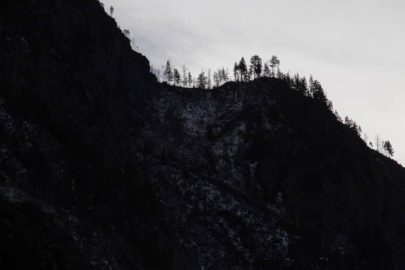 Горная гряда с деревьями в Чемальском районе Республики Алтай