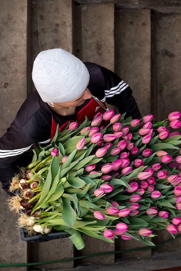 Работник несет собранные цветы в помещение, где их отделят от луковиц, сформируют букеты по 20 штук и отправят в холодильник