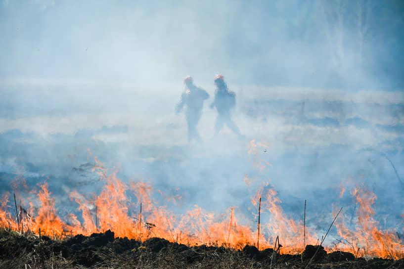 Учения МЧС России и предприятий лесных хозяйств рабочего поселка Сузун, Новосибирской области, по ликвидации лесного пожара. Пожарные во время тушения лесного пожара