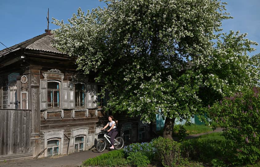 Вид горда Тары в мае, Омская область