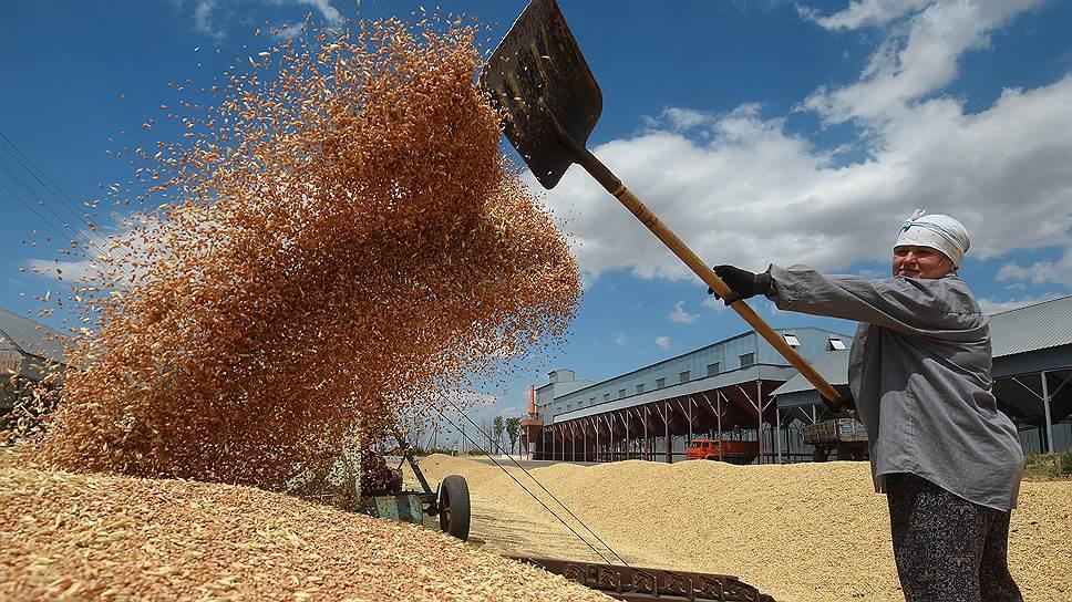 Зерно готовится на вывоз /