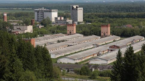 СпецХрюшАктив  / Часть стада свинокомплекса выкупили компании из Санкт-Петербурга и Москвы