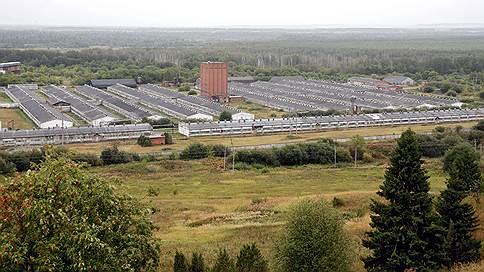 Бывший арендатор Пермского свинокомлекса требует с государственного АО 525 млн руб.