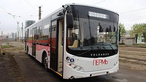Поставщик Volgabus для нужд Перми не исполнил контракт