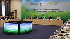 Пермский край вошел в тройку лидеров по реализации древесины на лесной бирже